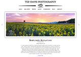 Ted Davis