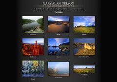 Gary Alan Nelson