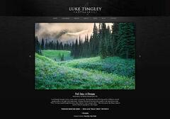 Luke Tingley