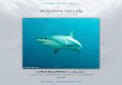 Charles Whiting