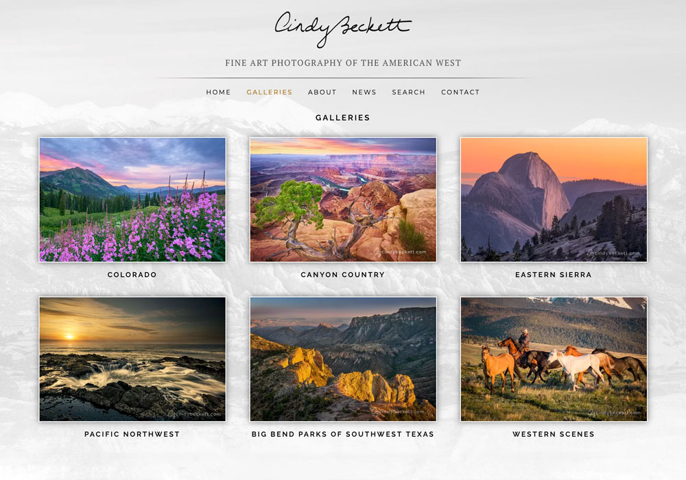 """"""" I love my new site, it is so fantastic... Thanks again for the beautiful work!"""" - Cindy Beckett, Denver, Colorado"""