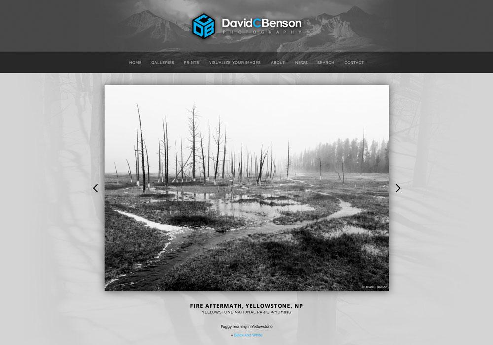 """""""I sure do appreciate your help and how responsive you are!"""" – David C. Benson, Denver, Colorado"""