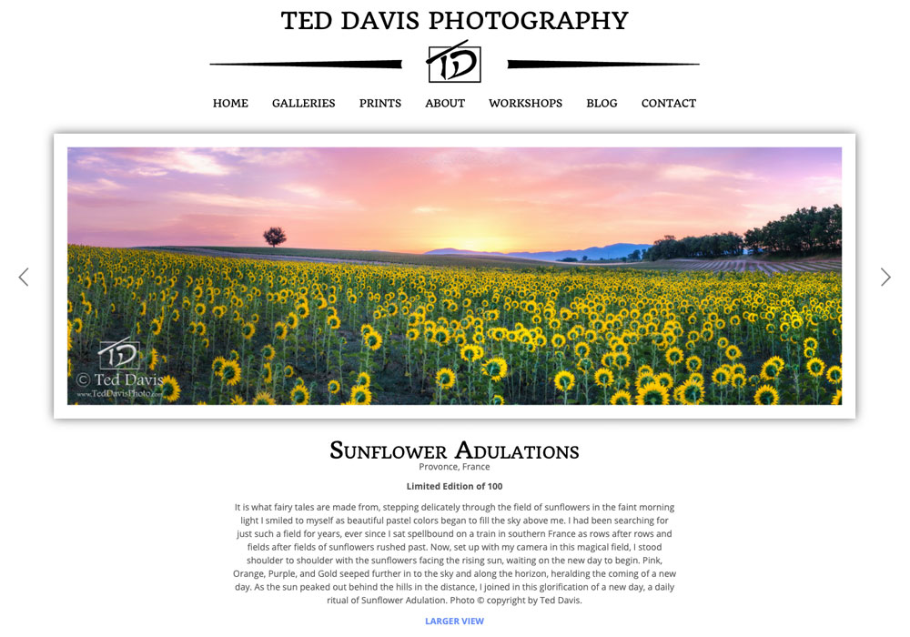 """""""Your hosting and web design services have been tremendous…"""" – Ted Davis, Lakewood Ranch, Florida"""