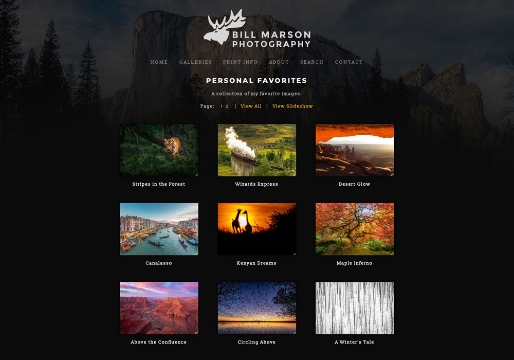 """""""Totally loving my website and can't say enough about how things turned out and your design services."""" – Bill Marson..."""