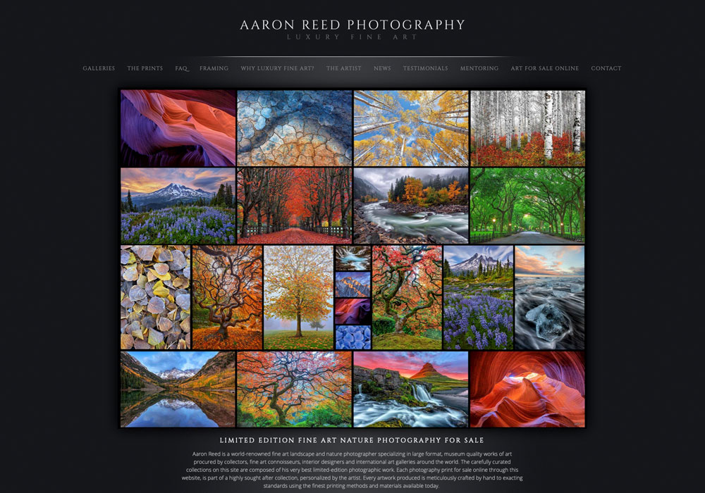 Aaron Reed's homepage image collage.