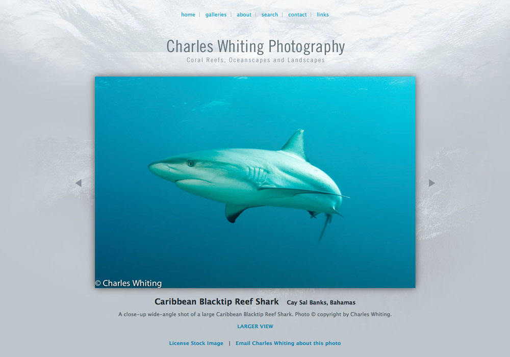 """""""Many thanks to WideRange Galleries for their creative vision, support, and sound advice."""" – Charles Whiting, Denver, Colorado..."""