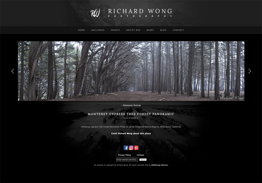 """""""After 15 years of managing my own web development, I decided to hire Jack Brauer of WideRange Galleries to rebuild my website..."""